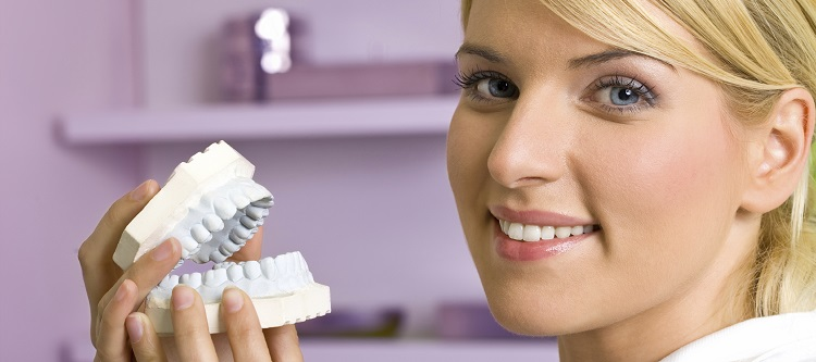 Dentist female showing reproduction model teeth